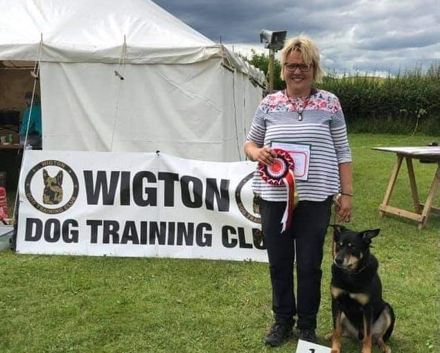 Razor makes obedience history – First Kelpie to win Obedience Champion title
